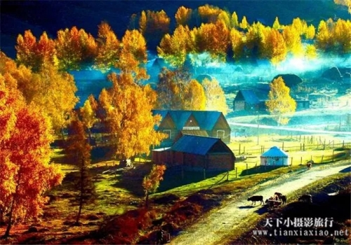 烂漫金秋摄北疆11日摄影团